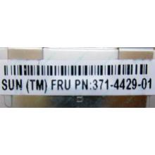 Серверная память SUN (FRU PN 371-4429-01) 4096Mb (4Gb) DDR3 ECC в Лосино-Петровске, память для сервера SUN FRU P/N 371-4429-01 (Лосино-Петровский)